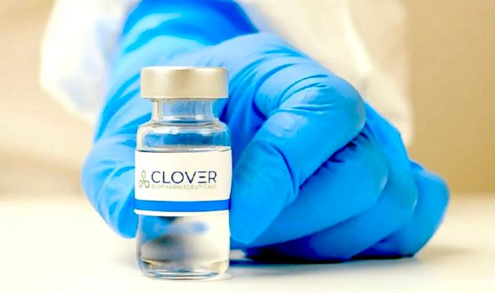Clover-COVID